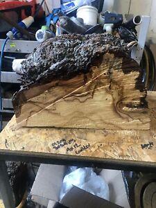 Horse chestnut conker woodturning Burr burl lathe art bowl hollow form blank
