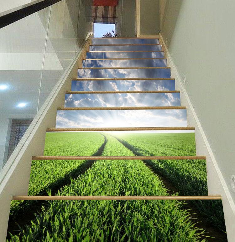 3D Sunrise Grassland contremarches Décoration Photo Murale Autocollant Vinyle Papier Peint US
