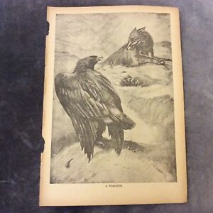 Vintage-Book-Print-A-Poacher