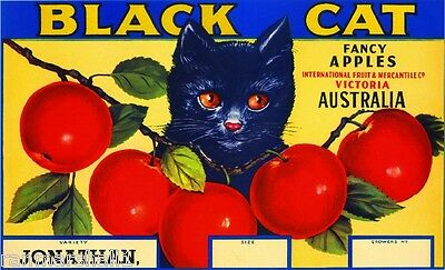 Victoria Australia Black Cat Kitten Apple Fruit Crate Label Art Print