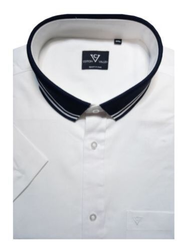 Oxford Cotton Maglia In Camicia Puro Collo Valley 14332 Con Cotone r4CwSrqt