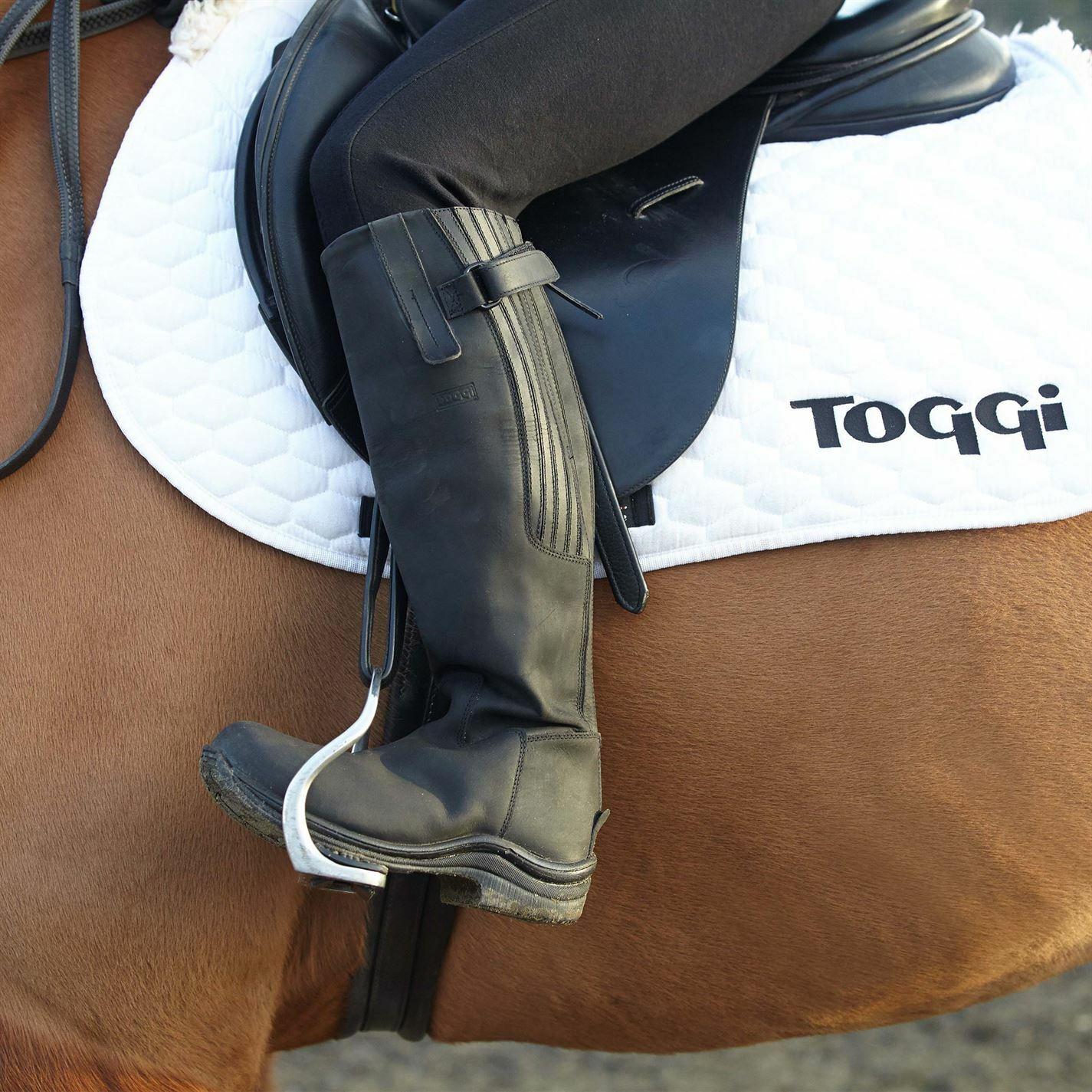 Toggi LINEA DONNA STIVALI CAVtuttiERIZZA ALTI Calgary Sautope Zip Impermeabile Flessibile Equestre