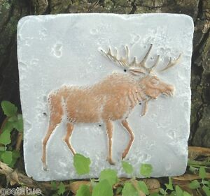 Moose-travertine-tile-mold-abs-plastic-mould
