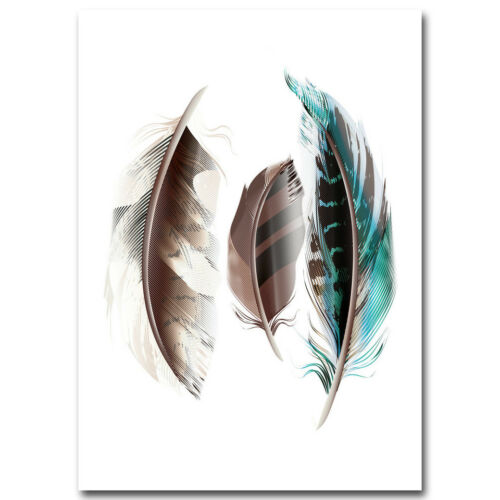 Feather Canvas Poster Picture Print Wall Home Art Decor