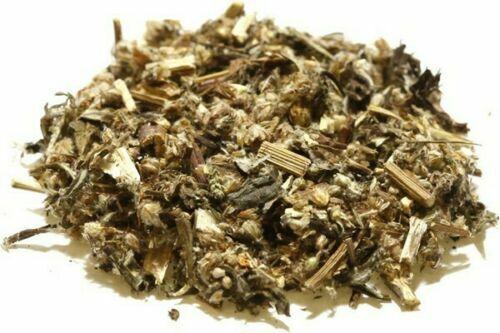 Dried Herb FREE SHIP Mugwort