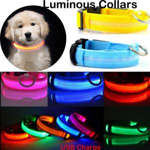 Light-up-LED-Dog-Pet-Collar-USB-Rechargeable-Pet-Safety-Luminous-Collars