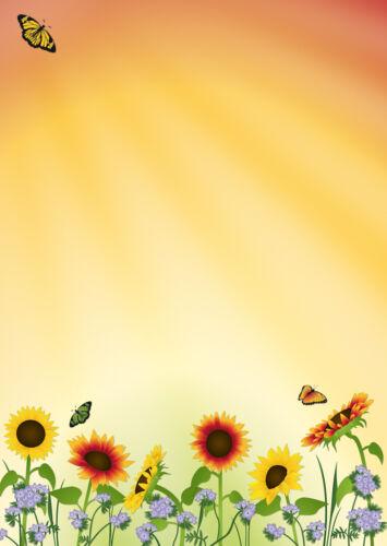 Motivpapier Briefpapier Sonnenblumenfeld 20 Blatt A4 Sommer Schmetterling Blumen
