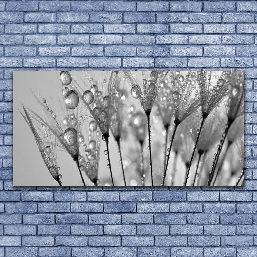 Wall art Print on Plexiglas® Acrylic 140x70 Dandelion Floral
