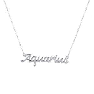 Lux Accessories Horoscope Zodiac Sign Aquarius Silver Necklace
