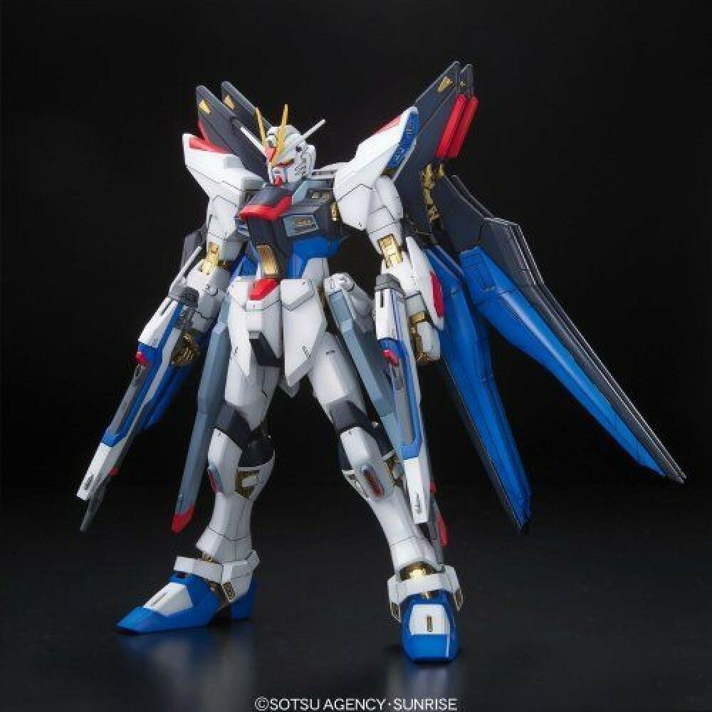 MG 1  100 ZGMF -X20A Strike fridom Gundam Full Burst Mode japan F  S S1682