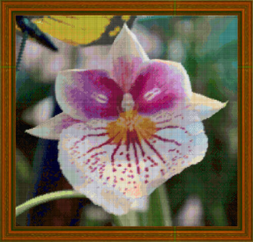 OLD MAN ORCHID cross stitch chart