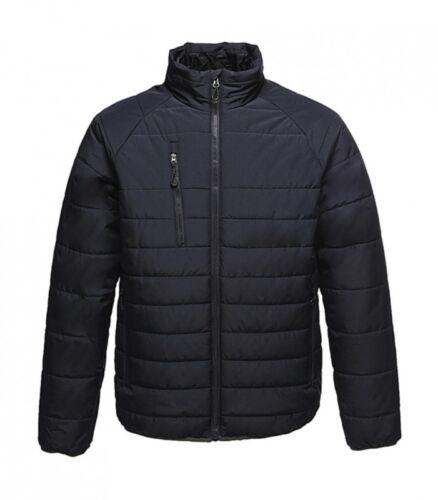 a trapuntata reggiseno funzionale uomo Warmloft Giacca vento giacca giacca Warmloft da qwHACR0