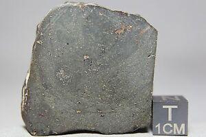 NWA-7191-L-Melt-Rock-Meteorite-59-3-gram-main-mass-with-bowed-shock-wave-amp-metal