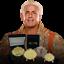 Ric-Flair-Wooooo-034-Big-Gold-034-Championship-Wrestling-Belt-Challenge-Coin-plus-more thumbnail 1