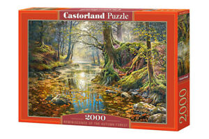 "Castorland Puzzle 2000 Pieces REMINISCENCE O 92x68cm/36""x27"