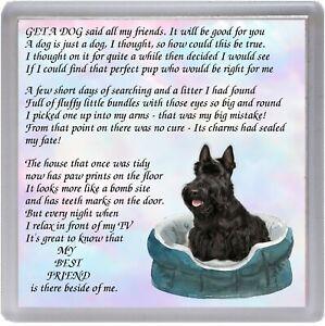 Scottish-Terrier-Scottie-Dog-Coaster-034-MY-BEST-FRIEND-Poem-034-by-Starprint