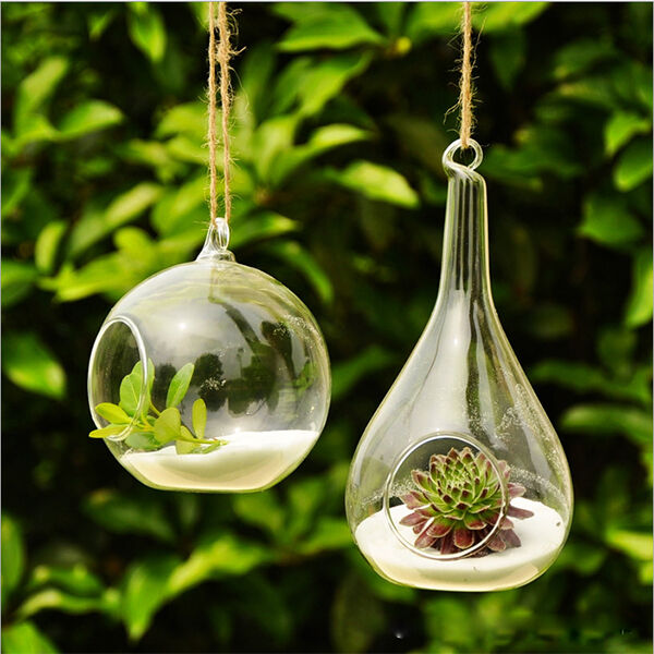 New Cute Glass Round with 1 Hole Flower Plant Hanging Vase Home Decor