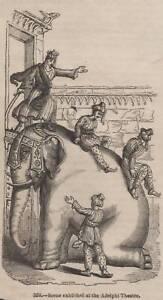 ANTIQUE-1845-PRINT-AFRICAN-INDIAN-ELEPHANT-HUNTING-SHOOTING-SAFARI-TUSK-GAME-9