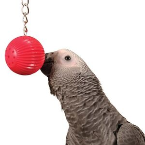 BIRDY-BABBLE-BALL-HANGING-CAGE-TALKING-TRAINER-PARROT-AMAZON-AFRICAN-GREY-TOY