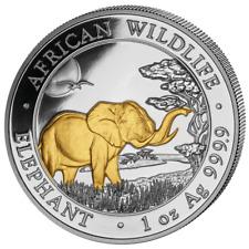 1 oz Afrika Somalia Elefant 2019 Gilded Edtion 999 Silber Silbermünze 100 Sh