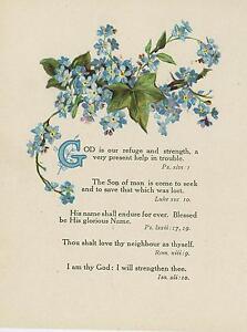 ANTIQUE FLOWERS BLUE FORGET ME NOTS IVY PLANT GOD BIBLICAL VERSES COLOR PRINT