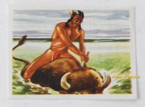 Image CHROMO Chocolat MARTOUGIN N°J15 Bison & Indien Album Chasseurs de Fauves
