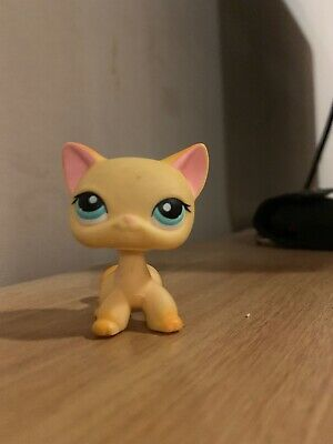Littlest Pet Shop Littlest Pet Shop Lps Short Hair Cat 339 With Cute Accessories Authentic Rare Toys Hobbies