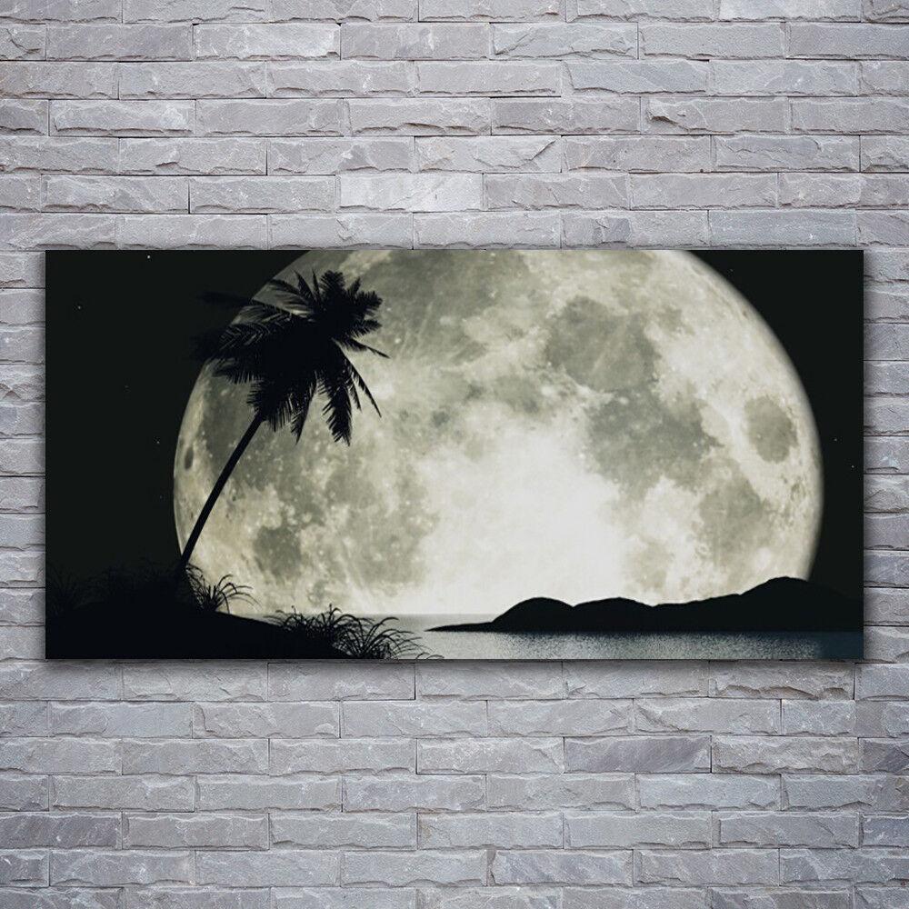 Murales cuadros cristal de cristal cuadros presión sobre cristal noche 120x60 luna palme paisaje fe303b