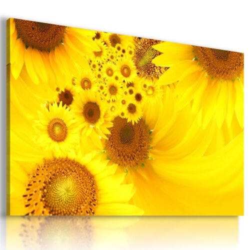 BEAUTIFUL FLOWERS SUNFLOWER Abstract Modern Canvas Wall Art Picture L473 MATAGA