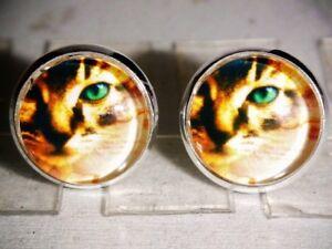 Ohrstecker-Katze-Tiere-Damen-Ohrringe-Ohrschmuck-Modeschmuck-Cabochon-Glas