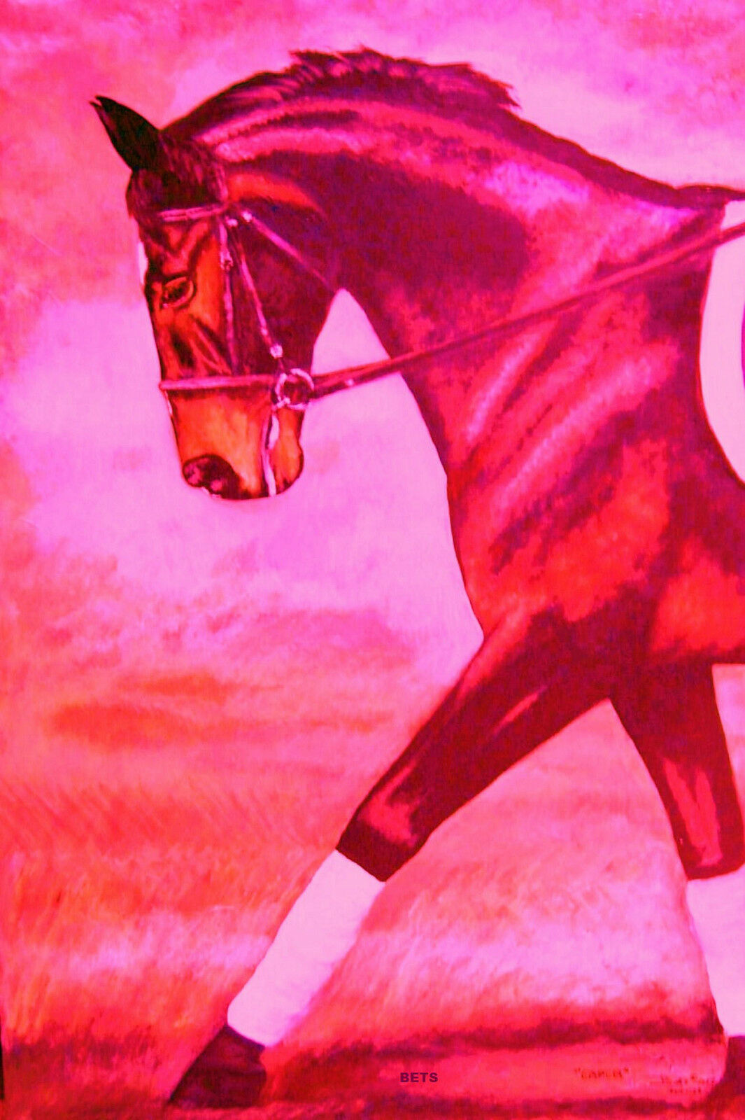 Giclee HORSE PRINT DRESSAGE Art CAPER by artist BETS 19 5 COLORS print Größe 14 X 19 BETS 7efe44
