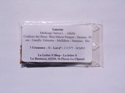 Medicago Sativa L Engrais Vert - Green Manure - SEM05 Luzerne - Alfalfa -