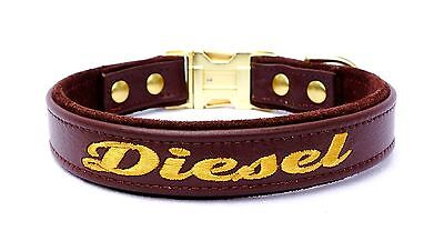 Leather Dog Collar Engraved Buckle One Inch Width Custom Colors Metal Buckle