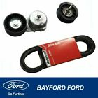 Ford DBK123AAK1T Drive Belt Tensioner & Idler Pulley Kit