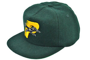 Image is loading PALACE-SKATEBOARDS-ROADRUNNER-SNAPBACK-GREEN-100-AUTHENTIC 34d568b33a1