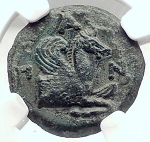 PANTIKAPAION-in-Bosporus-310BC-Ancient-Greek-Coin-w-SATYR-amp-PEGASUS-NGC-i73132