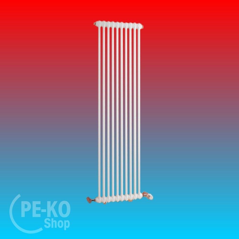 Arbonia Röhrenradiator 2 reihig Modell 2050 Bauhöhe 500 seitliche Anschlüsse