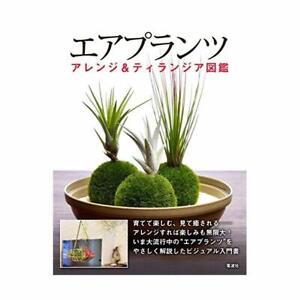 Bonsai-Air-Plants-arrange-amp-Tillandsia-picture-book
