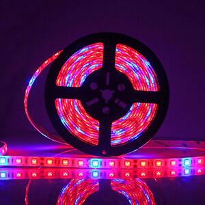 5m smd 5050 led grow light strip lamp red blue for indoor plants image is loading 5m smd 5050 led grow light strip lamp aloadofball Choice Image