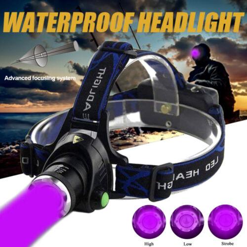 Fluoreszenz Scheinwerfer Zoom UV Schwarzlicht Taschenlampe Scorpion Bernstein