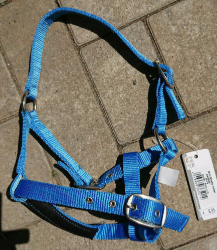 Waldhausen Mini Shetty Halfter Azur blau