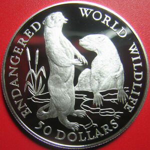 1990-COOK-ISLANDS-50-SILVER-PROOF-EUROPEAN-OTTERS-ENDANGERED-WILDLIFE-RARE-COIN