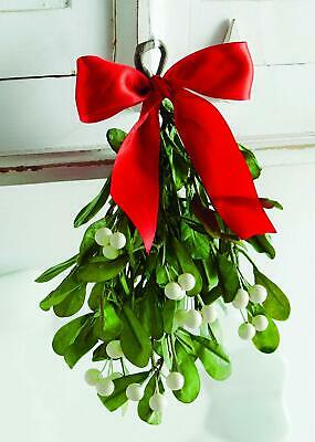 Hanging Mistletoe Christmas Decoration with Berries 21cm