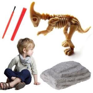 Kids Novelty Dinosaur Fossil Model Set Jurassic Archaeological Education Toy