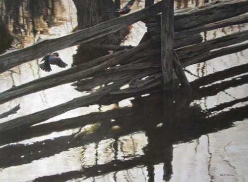 VTG Art Red Winged Blackbirds Rail Fence DETAIL Robert Bateman 1976 Water Pond