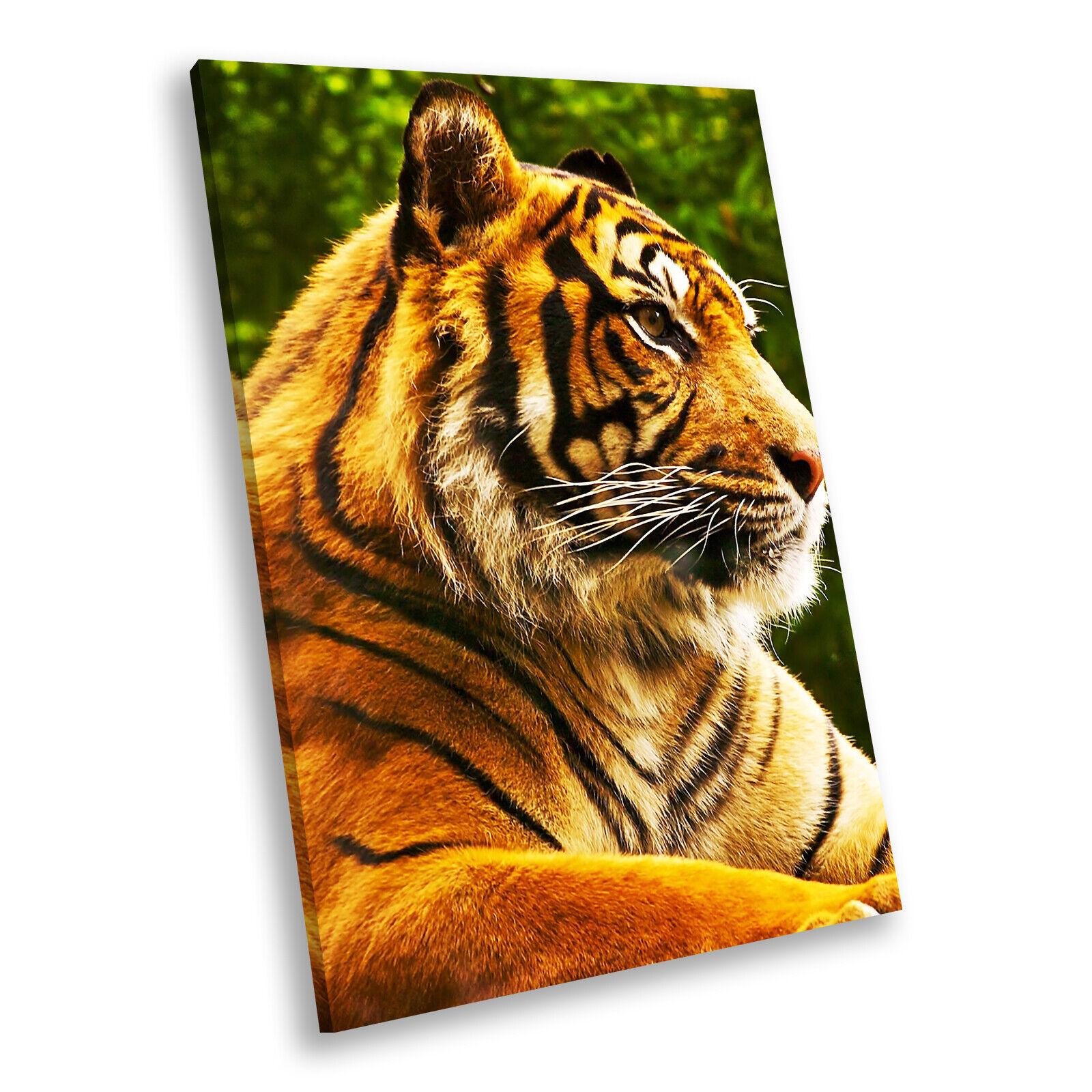 Orange Tiger Grün Forest Portrait Animal Canvas Wall Art Large Picture Prints