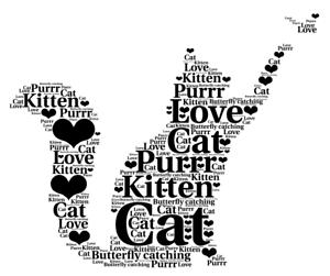 Personnalisé Chat Chaton Chasing Butterfly Word Art Photos encadrées ou non