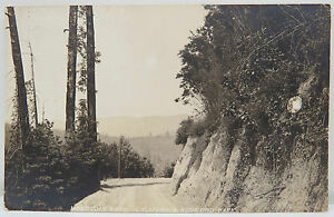 Redwood-Park-1916-Cancel-One-Cent-Spamp-USA-Postcard-Ak-Postcard-A2559