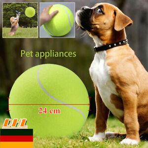 tennisball spielzeug hund