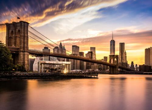 621V -Brooklyn Bridge Manhattan Stadt Fluss Skyline VLIES Fototapete-NEW YORK-